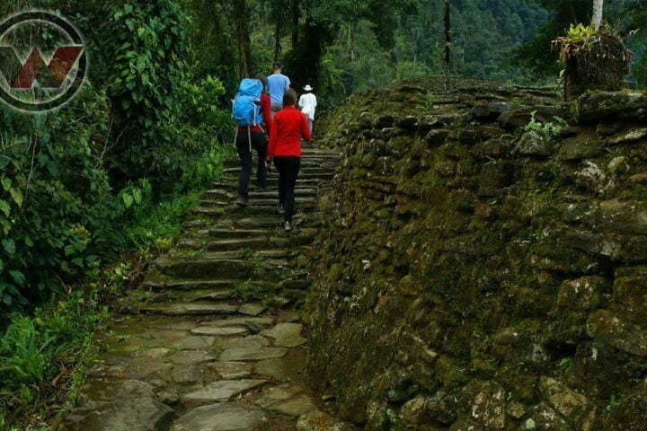 adventurers touring the lost city