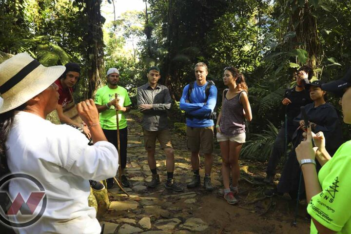 wiwa indigenous guide lost city